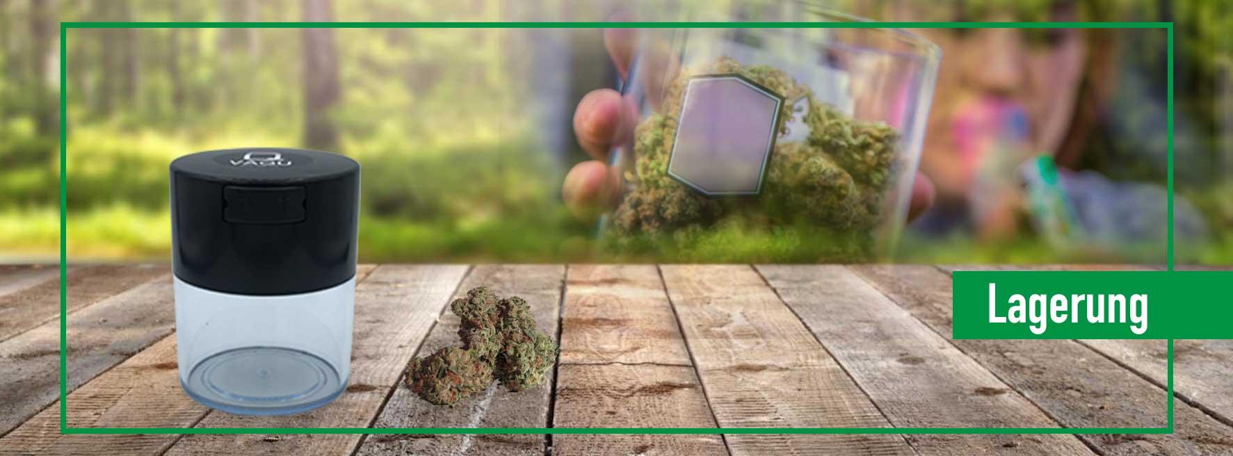 Cannabislagerung