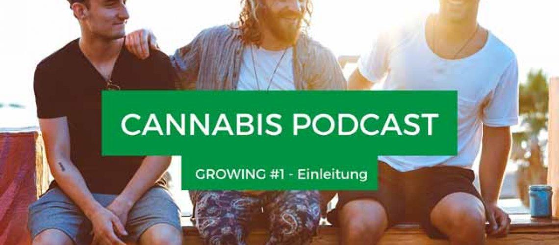 Podcast-(3)